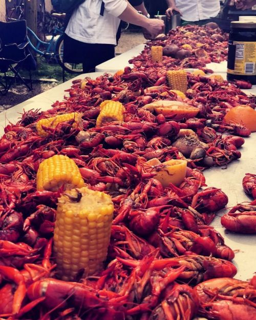 crawfish new orleans
